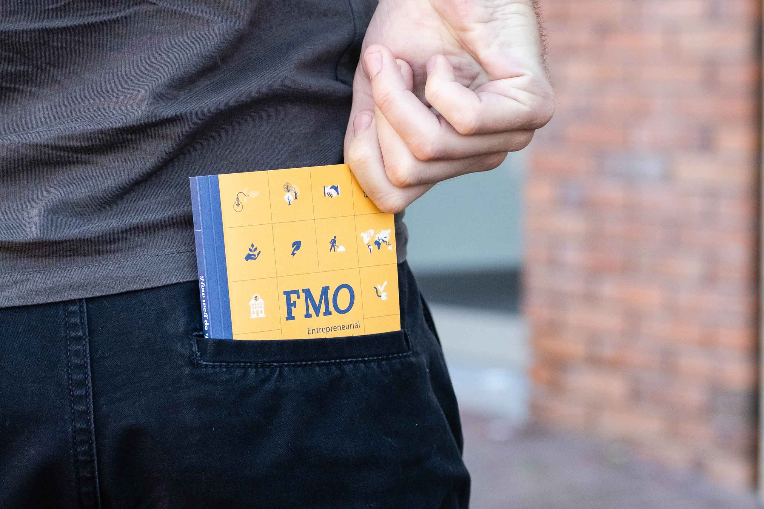 FMO / Facts and Figures book